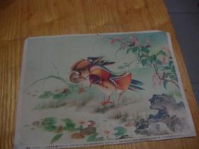54年新1版56年印刷,老年画<< 四季花鸟,二 定价2分, 戈缃岚作,统一编号t8085,604>>品图自定