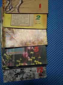 中国气功科学【1997年第1-12期】缺第4期【共11本】