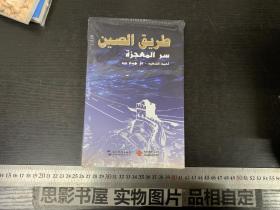 中国道路 奇迹与秘诀(汉阿)