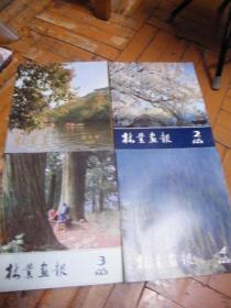 林业画报1981 创刊号 总第1.2.3.4期(4本合售)