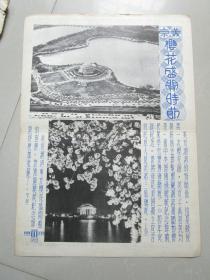 民国时期宣传画宣传图片一张(编号20)
