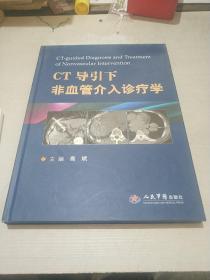 CT导引下非血管介入诊疗学(一版一印)