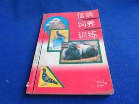 信鸽的饲养与训练【作者几十年饲养训练信鸽的经验和教训之精华】