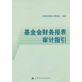 基金会财务报表审计指引