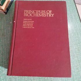 生物化学原理 第6版 英文版