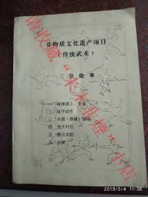 非物质文化遗产项目(传统武术):三皇炮拳