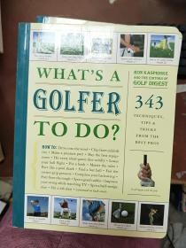 二手正版Whats a Golfer to Do?: 343 Techniques, Tips, and Tricks from the Best Pros