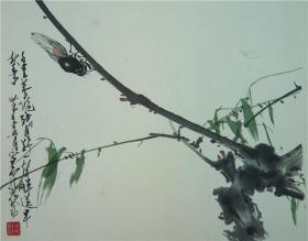 荣宝斋套色木版水印:赵少昂《蝉》(画心尺寸36.8×31.5厘米·单片)