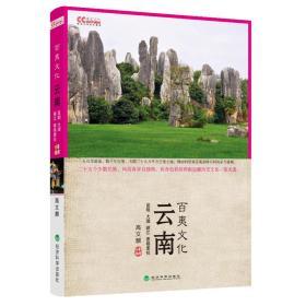 云南百夷文化