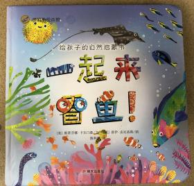 尾单正品 纸板书 漂流瓶绘本馆 给孩子的自然启蒙书 一起来看鱼 明天出版社