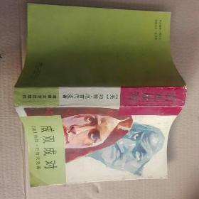 成双成对  美国当代文学名著译丛