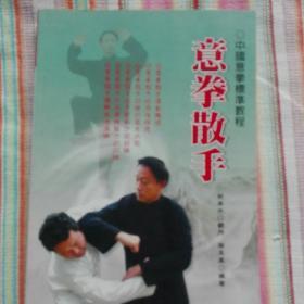 意拳散手  中国意拳标准教程