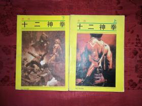 经典武侠:十二神拳(全二册)