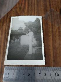 90年代开元寺西塔塔尖照片