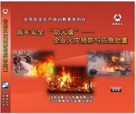 2019年安全月 企业火灾预防与应急处置 2DVD教育视频光盘9F05g