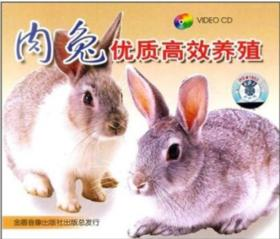 肉兔优质高效养殖视频光盘,如何养殖肉兔