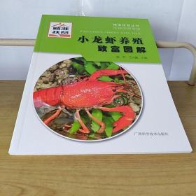 小龙虾养殖致富图解