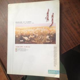 花的原野2011.10