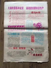 电影海报华主席访问朝鲜53.5cm*38.5cm套色油印 影讯(1978年第2、3、5、6、7、8、9、10、12期)共9期合售