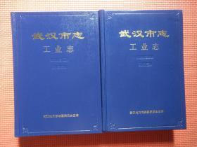 武汉市志  工业志(上下册)