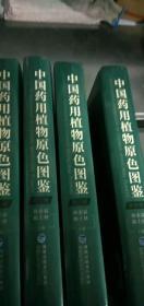 中国药用植物原色图鉴  全4册  精装