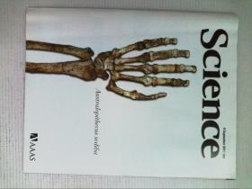 英文科学杂志 Science 2011/09/9 NO.6048 外文原版英国著名杂志