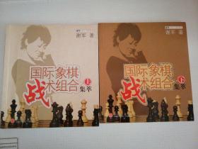 国际象棋战术组合集萃(下)