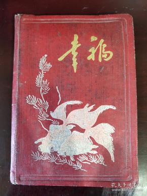 日记本1965年  写过字 有插图