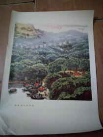 72年文革4开宣传画 苏州市业余美术创作组《绿树丛中万点红》