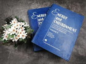 Energy and Environment:Proceedings of the intemational Conference on Energy and the Environment December 2003 Shanghai China(VOL.1+VOL.2合售)
