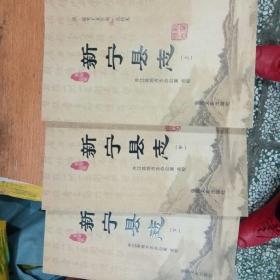 清、道光十五年版点校本:新宁县志(上中下共三册)