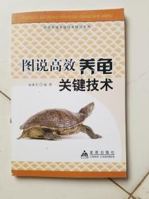 图说高效养龟关键技术