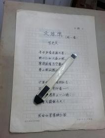红卫兵诗稿:文革渠