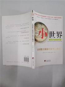 小世界    全球整合重塑中国商业模式-