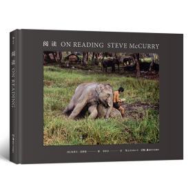 史蒂夫·麦凯瑞:阅读