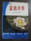 P2734   盆栽月季·图文本