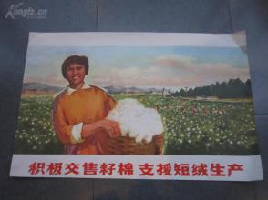 罕见大文革时期宣传画《积极交售籽棉 支援短绒生产》-尊夹大3-1(7788)