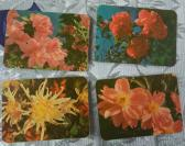 1978年北京市日历厂花卉1套4全,绿版
