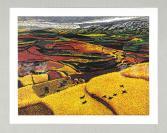 当代实力派版画家 高朝敏 2011年亲笔签名  油印版画作品《红土系列之野望》一幅(作品编号为:35/50,作品直接得自于艺术家本人!) HXTX110985