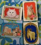 可爱的猫咪1套4枚,天津分公司