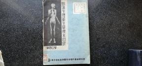 2)【首见】满洲 吉林省立师道学校医学教科书《岛津生理卫生学标本目录》第40号(新京出张所印刷)
