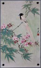 中央美院教授【田世光】花鸟