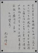 中国古代文化传播者、国学大师【南怀瑾】书法