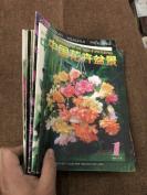 中国花卉盆景&2001年10册合拍&种植&花卉&盆景&盆栽&一册如尾图书脊开裂,除图片展示外,未每页检查,可能存在各种瑕疵及品相问题,避免品相争议,书品定1品