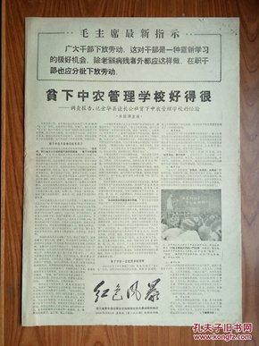 《红色风暴》--桐庐县革委会成立,
