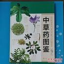 中草药图鉴