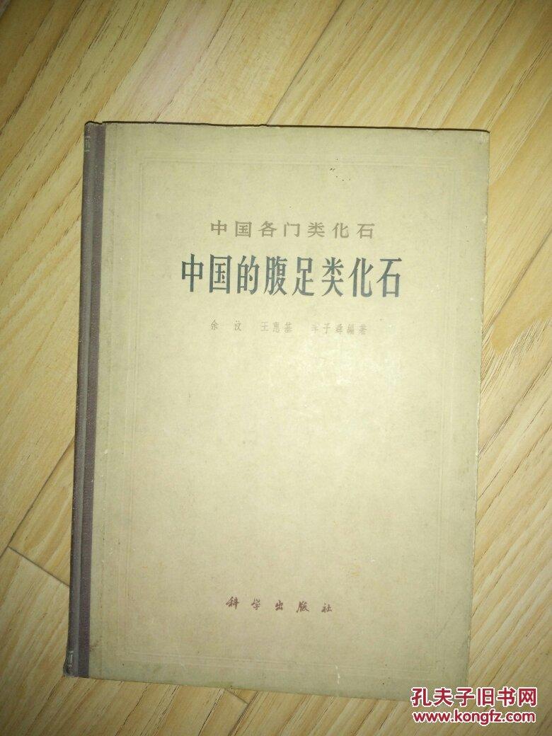中国的腹足类化石   (精装)【中国各门类化石】       ---- 【包邮-挂】
