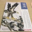 中国画教程:猛禽