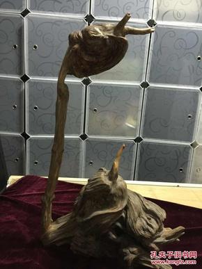 黃山松樹瘤根雕鵝造型(包老包真)