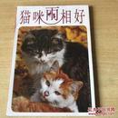 猫咪两相好 珍藏版 摄影明信片